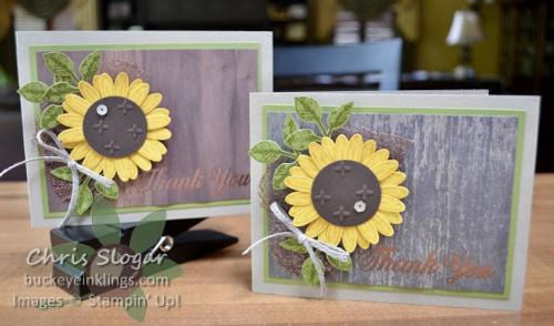 Daisy Punch Sunflowers Buckeye Inklingsbuckeye Inklings
